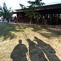 八德埤塘生態公園(16)