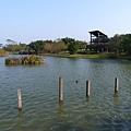 八德埤塘生態公園(18)