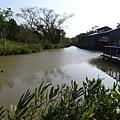 八德埤塘生態公園(20)