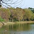 八德埤塘生態公園(28)
