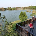 八德埤塘生態公園(42)