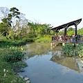 八德埤塘生態公園(46)