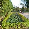 八德埤塘生態公園(55)