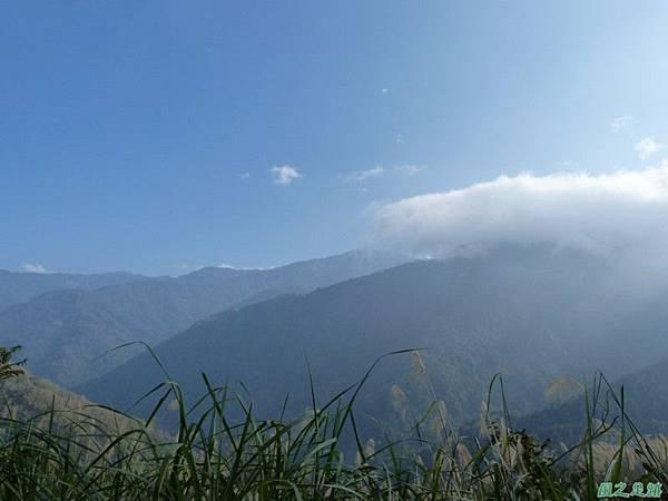 野馬敢山20140111(9)