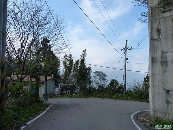 野馬敢山20140111(10)