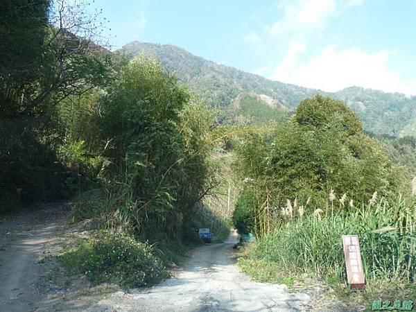 野馬敢山20140111(15)