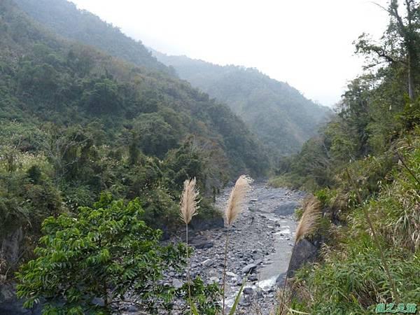 野馬敢山20140111(23)