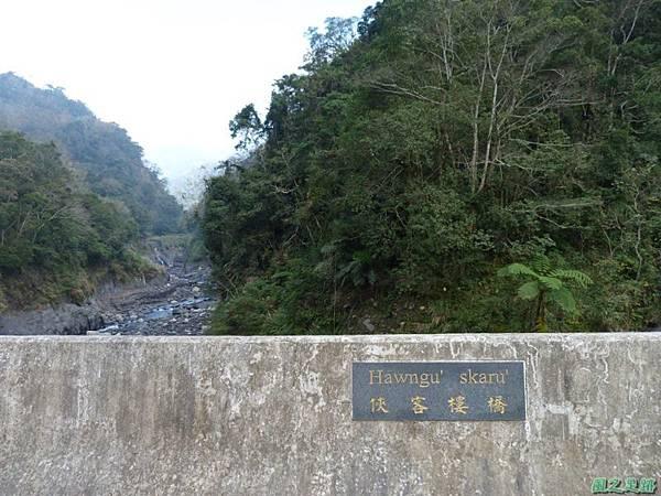 野馬敢山20140111(25)