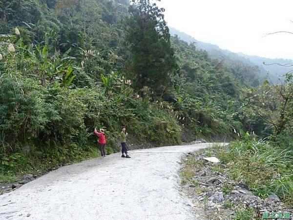 野馬敢山20140111(29)