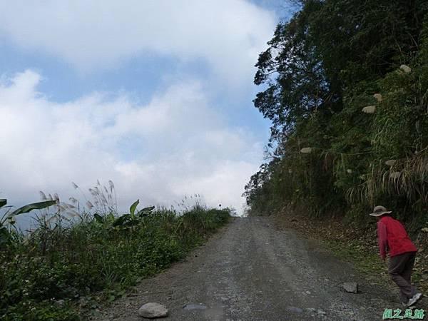野馬敢山20140111(36)