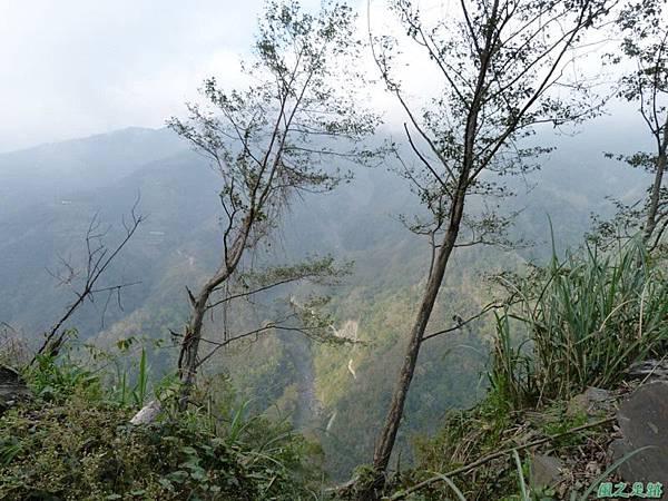野馬敢山20140111(37)