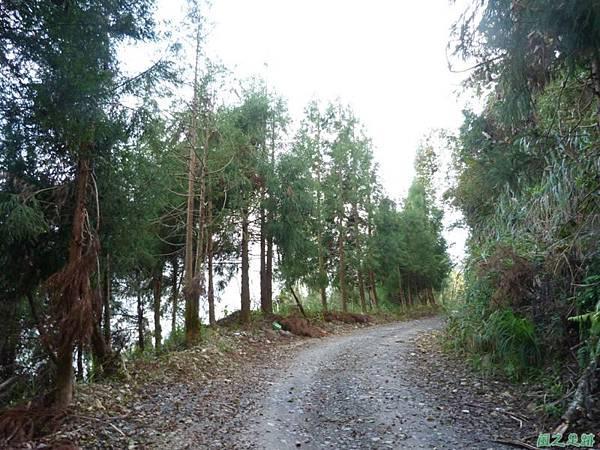 野馬敢山20140111(38)