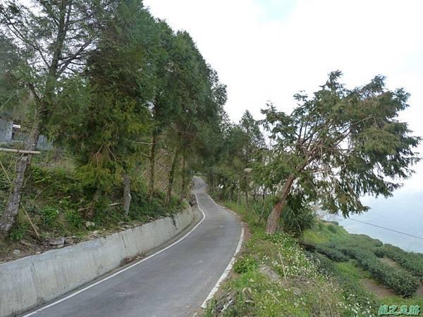 野馬敢山20140111(40)