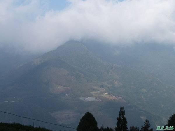 野馬敢山20140111(42)