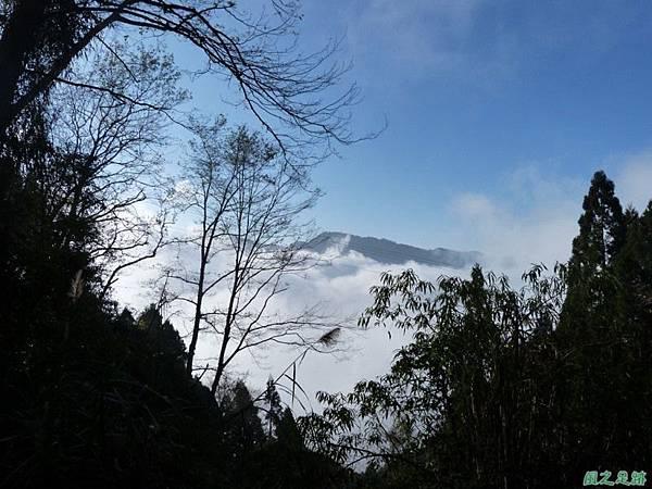 野馬敢山20140111(52)