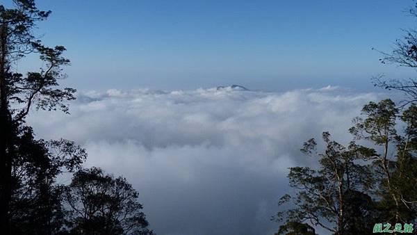 野馬敢山20140111(54)