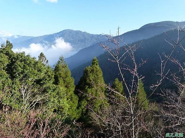 野馬敢山20140111(59)