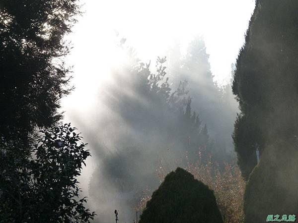 野馬敢山20140111(76)