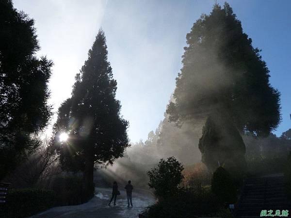 野馬敢山20140111(77)