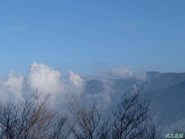 野馬敢山20140111(83)