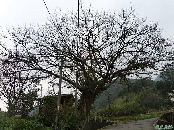 赤山2014018(4)