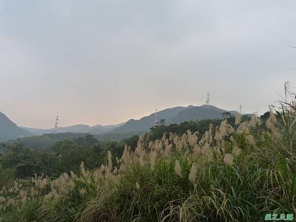 赤山2014018(20)