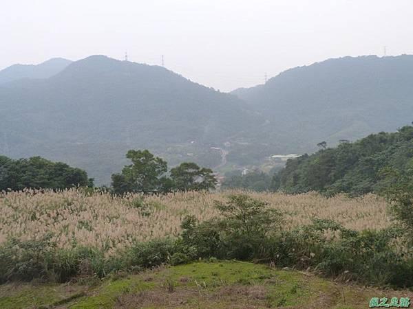 赤山2014018(51)