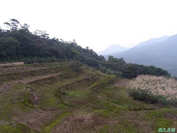 赤山2014018(52)