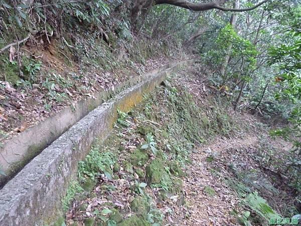 赤山2014018(58)