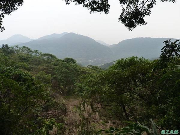 赤山2014018(60)