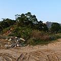 缺子坑山20140105(1)
