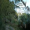 光崙山20140124(32)