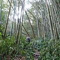 光崙山20140124(37)