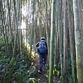 光崙山20140124(46)