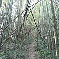 光崙山20140124(47)