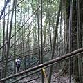 光崙山20140124(70)