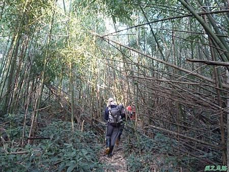 光崙山20140124(73)