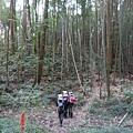 光崙山20140124(75)