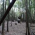 光崙山20140124(78)