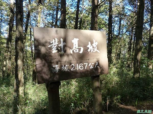 對高岳20140125(45)