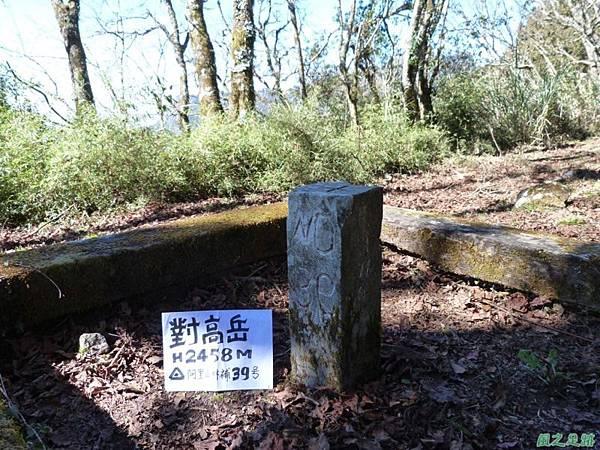 對高岳20140125(94)