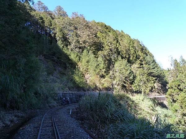 對高岳20140125(134)