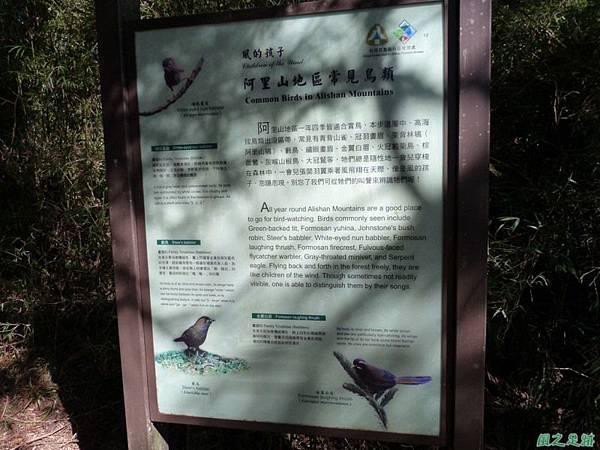 大塔山20140125(10)