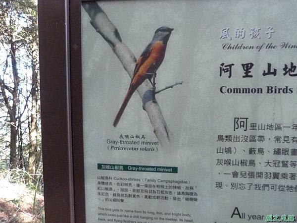 大塔山20140125(26)