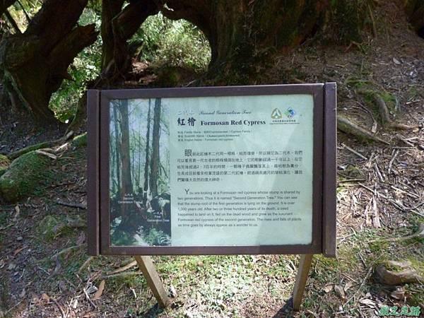 大塔山20140125(35)