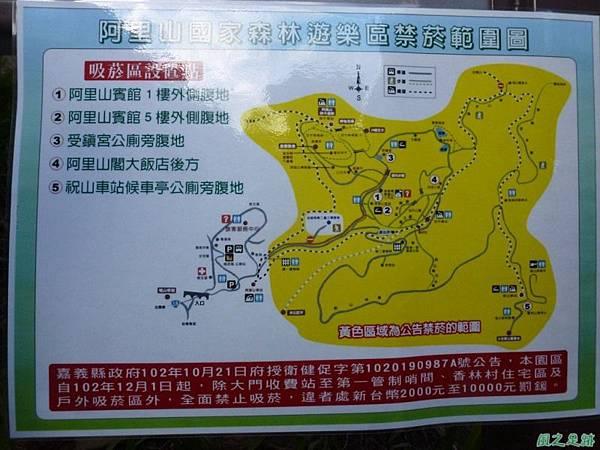 水山巨木20140125(20)