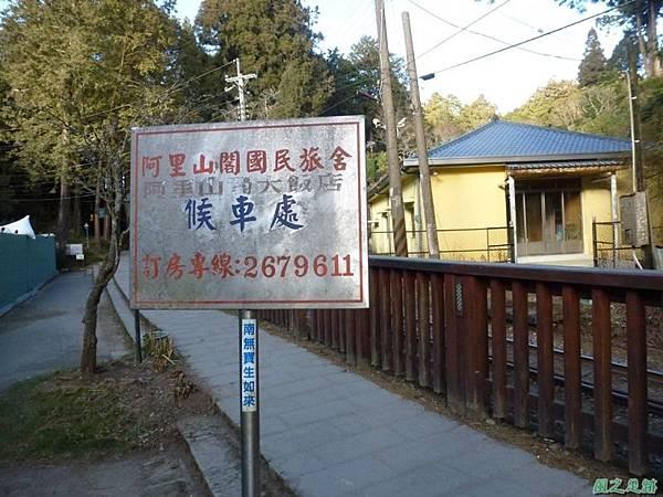 水山巨木20140125(22)