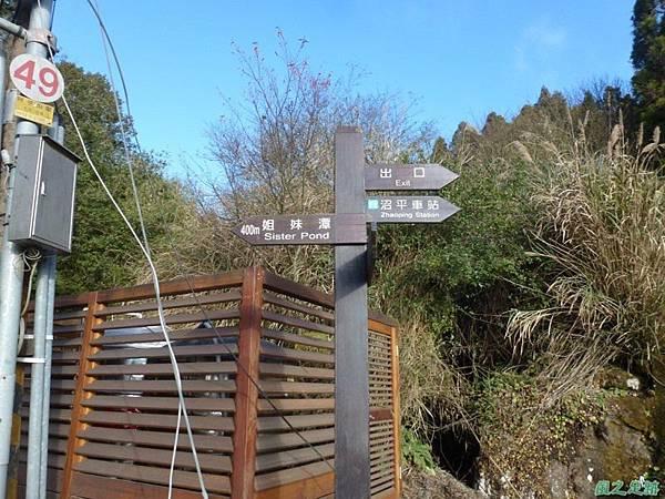 水山巨木20140125(25)