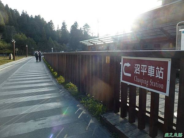 水山巨木20140125(33)