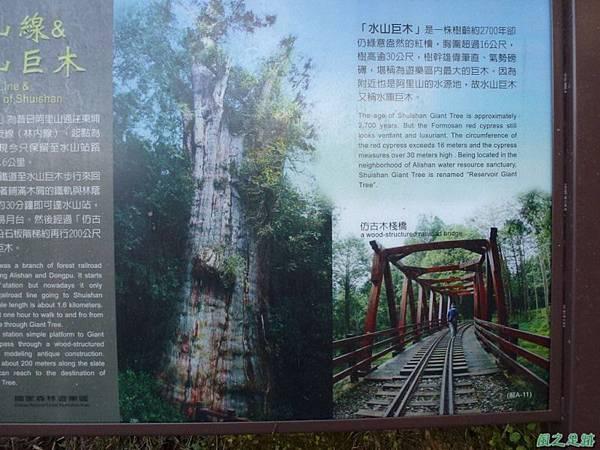 水山巨木20140125(48)